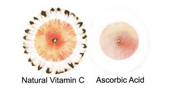 Natural Vitamin C vs Ascorbic Acid