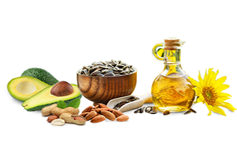 Plant Sources with High Levels of Vitamin E